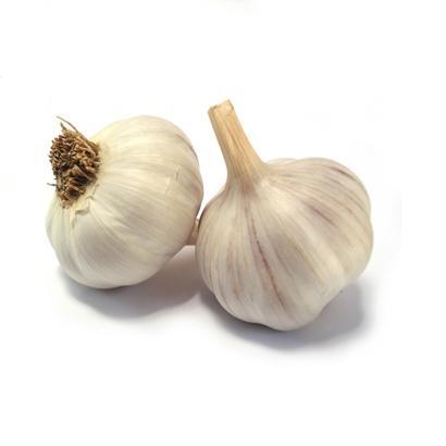 Organic Garlic Oil